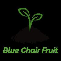 bluechairfruit logo